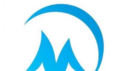 Movelle Company
